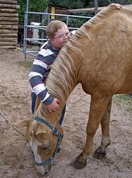 Colorado Springs Therapeutic Riding Center 3